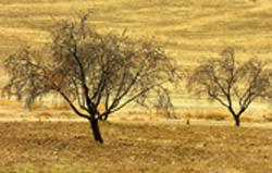 andalusisk natur
