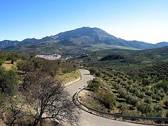 Väg i Andalusien