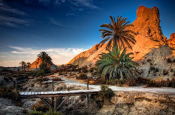 Spansk öken som tagen ur Arizona