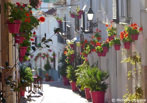 Blommor på en gata i Estepona